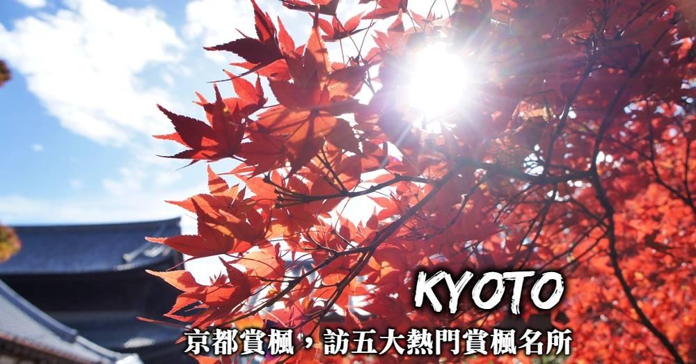京都賞楓一日遊-京都5大紅葉名所,前往京都探訪最美的紅葉景點!